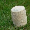 Chabichou du Poitou AOP (180 g)